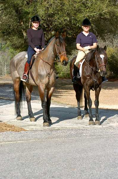 Hunter's Rest takes an annual trip south to Charleston and Aiken, S.C., with horses and students. Talk to us about joining the crew for a mid-winter break.