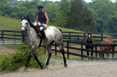 Riders at Hunter's Rest get opportunities beyond what any other stable can offer, from side-saddle lessons to foxhunting and hunter pacing to polo and games.