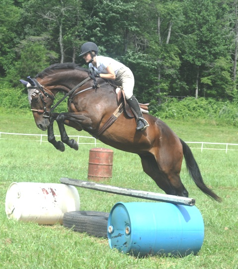 Jumping – here with former advanced-level three-day event veteran Persistant Rain (yes it's spelled like that!) – is just one of the skills you can learn and practice at Hunter's Rest.
